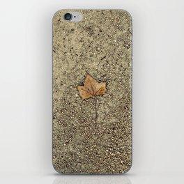 Forgotten Autumn  iPhone Skin