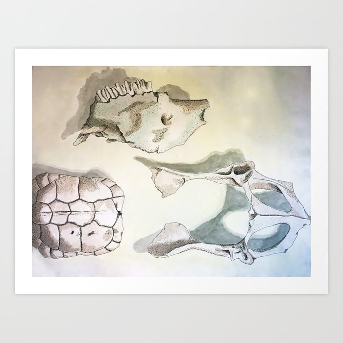 Assorted Bones Art Print