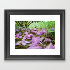 The Ephemerality of Life Framed Art Print