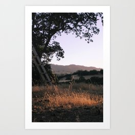 carmel valley light Art Print