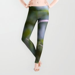 Growth and Transformation Leggings