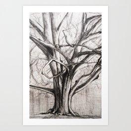 Tree in the Park Art Print