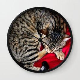 Cute Tabby Cat napping Wall Clock