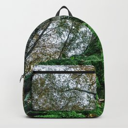 Image seen from below of a tree with large roots covered by bright green moss Backpack