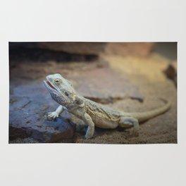 Reptile Rug
