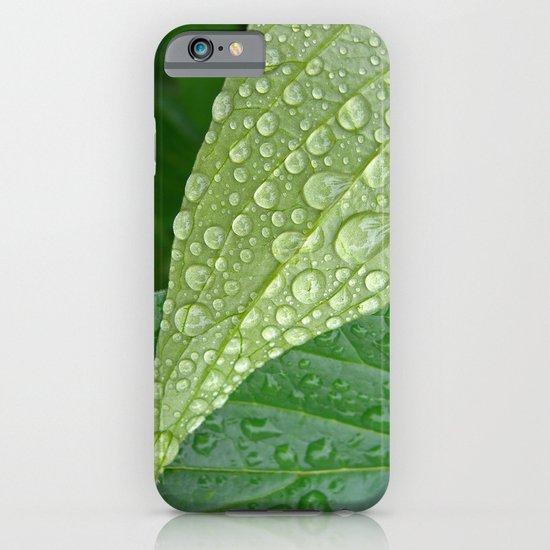 rainy drops I iPhone & iPod Case