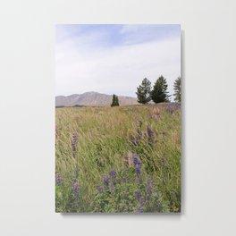 New Zealand Purple Flowers Metal Print