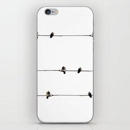 Bird on Wire iPhone Skin
