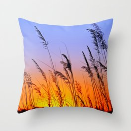 Sunrise in Africa Throw Pillow