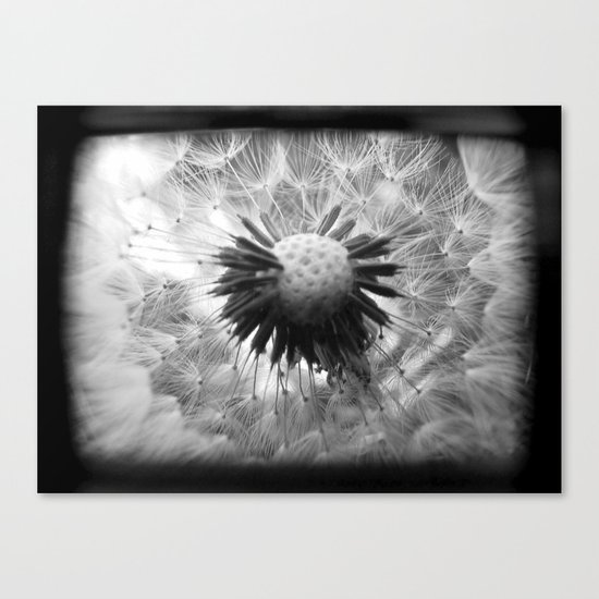 On the Inside - Through The Viewfinder (TTV) Canvas Print
