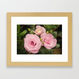 Scent With Love Framed Art Print