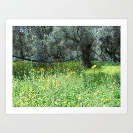 Taraxacum and olive Art Print