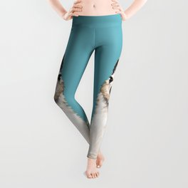 Unicorn Llama Blue Leggings