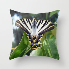 Swallowtail Buttterfly Resting on Oleander Leaves Throw Pillow