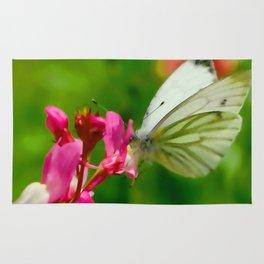 Butterfly's inn ... Rug