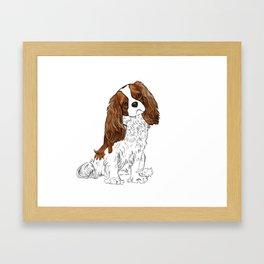 Cavalier King Charles Spaniel Blenheim Framed Art Print