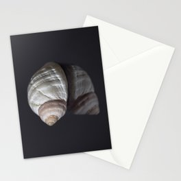 Seashell snail reflection Stationery Cards