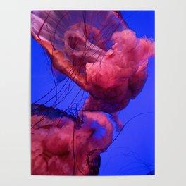 Jellyfish Photography | Pink | Rainbow | Colourful Deep Sea Exploration | Ocean creature Poster