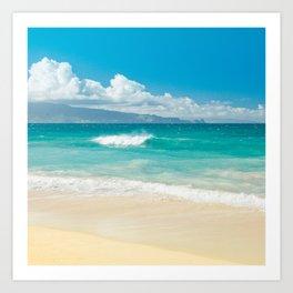 Hawaii Beach Treasures Art Print