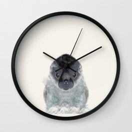 little seal Wall Clock