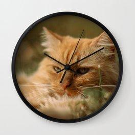 Cat by Kristina Tamašauskaitė Wall Clock