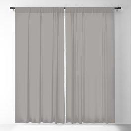 NEW YORK FASHION WEEK 2019- 2020 AUTUMN WINTER PALOMA Blackout Curtain