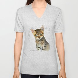 European Shorthair Kitten Painting with Faux Marble Frame Unisex V-Neck