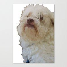 Grumpy Terrier Dog Face Canvas Print