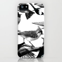 A Volery of Birds iPhone Case
