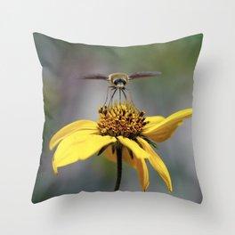 Moth on a Flower 1 Throw Pillow