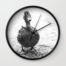Mrs Pemberley Wall Clock