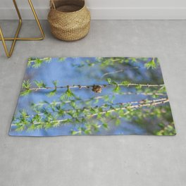 Young larch - Nature photography Rug