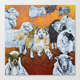 My Dog, the Border Collie and Sheep Canvas Print