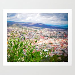 Zacatecas Art Print