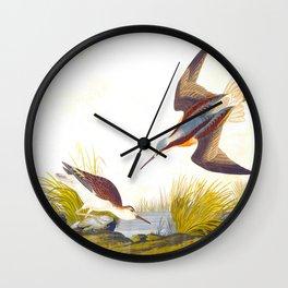 Wilson's Phalarope Bird Wall Clock