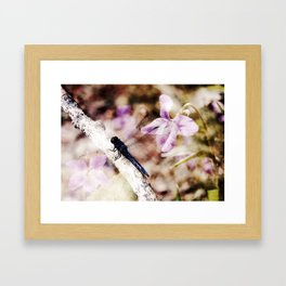 Dragonfly :: Among the Violets Framed Art Print
