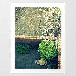 springing. Art Print