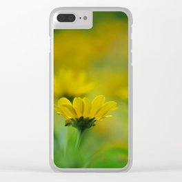 Blurs of Summer Clear iPhone Case