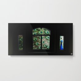 Peacock in a Window Metal Print