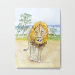Lion in Africa Watercolor Metal Print
