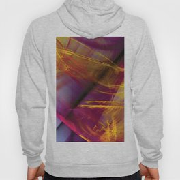 Untitled 111 Hoody