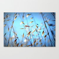 grass Canvas Prints featuring grass by  Agostino Lo Coco