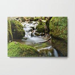Moss Covered Boulders Metal Print