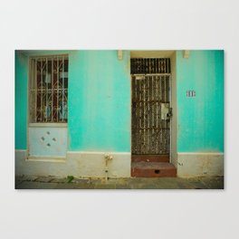 Old doors Canvas Print