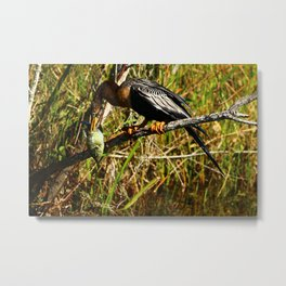 A Colorful Meal Metal Print