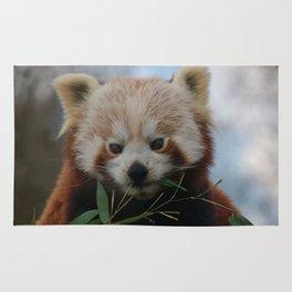 Beautiful Red Panda Rug
