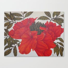 Spathodea Campanulata Canvas Print