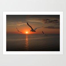Gulls Flying towards the Sun over Lake Michigan Art Print