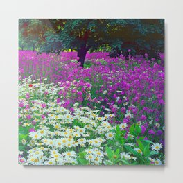 Wildflowers Daisies Shaded by Trees Fine Art Photo Metal Print