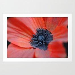 An Artificial Poppy Art Print